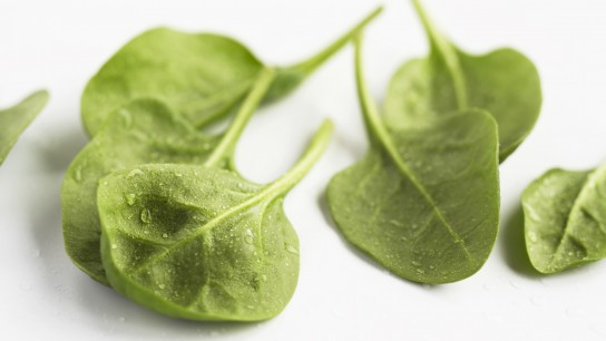 Plant-based Iron-Rich Foods: Top 12 Sources + Infographic