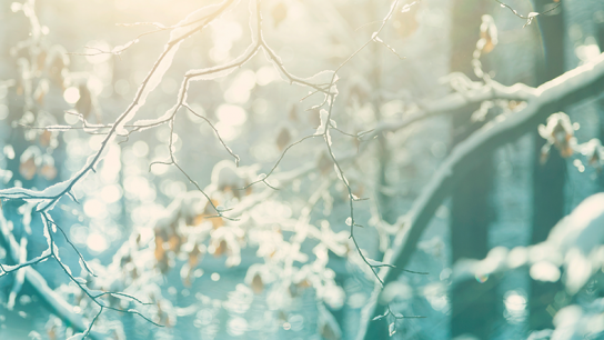 9 ways to conquer seasonal affective disorder