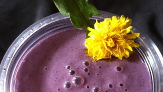 Wild and Crazy Morning Energizer Smoothie