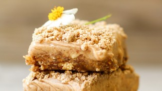 Cinnamon Streusel Ice Cream Bars