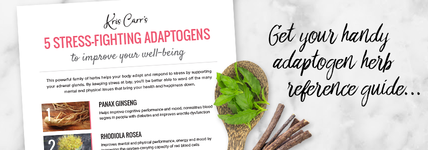 adaptogens-guide-blog