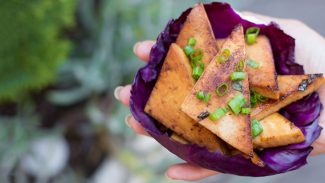 Garlicky-Ginger Tofu Triangles
