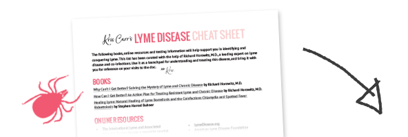 lyme disease testing resource sheet