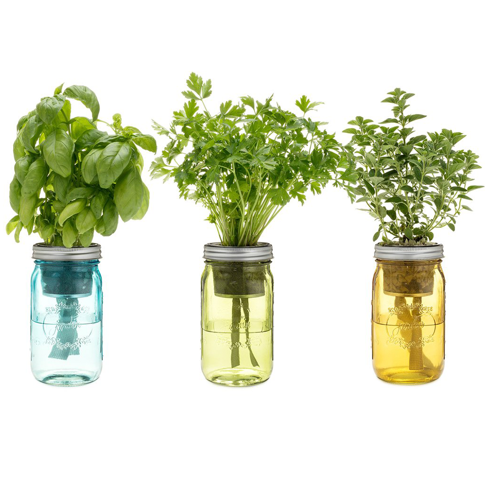 herb kit holiday gift