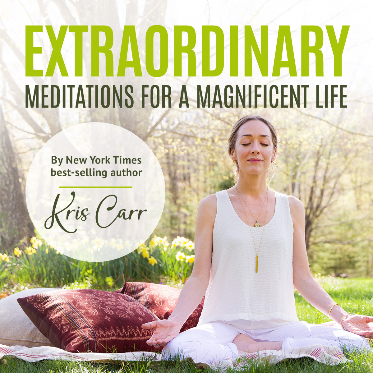Extraordinary Meditations for a Magnificent Life