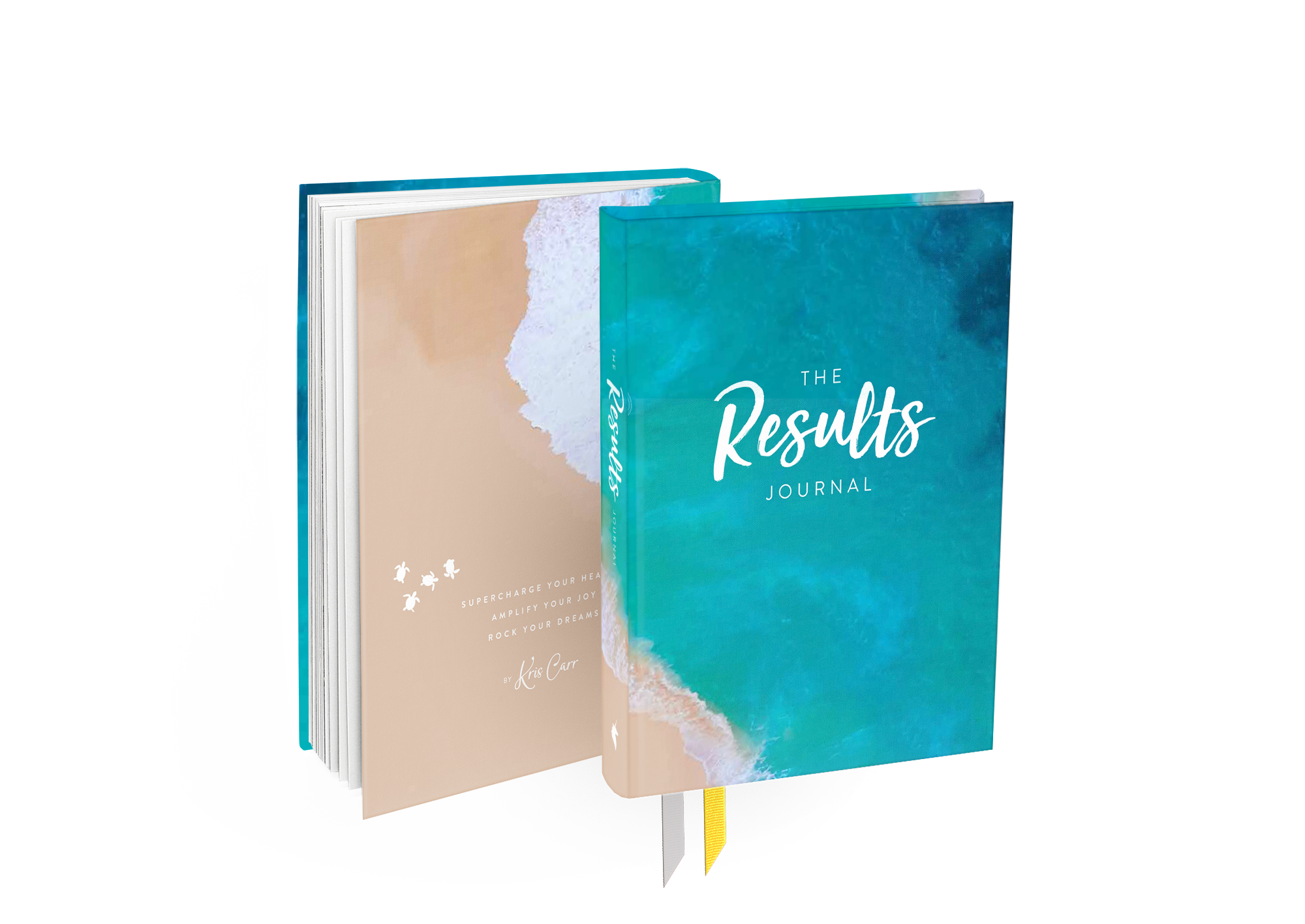 Results Journal Ocean Cover mockup