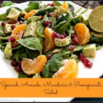Spinach, Avocado, Mandarin & Pomegranate Salad