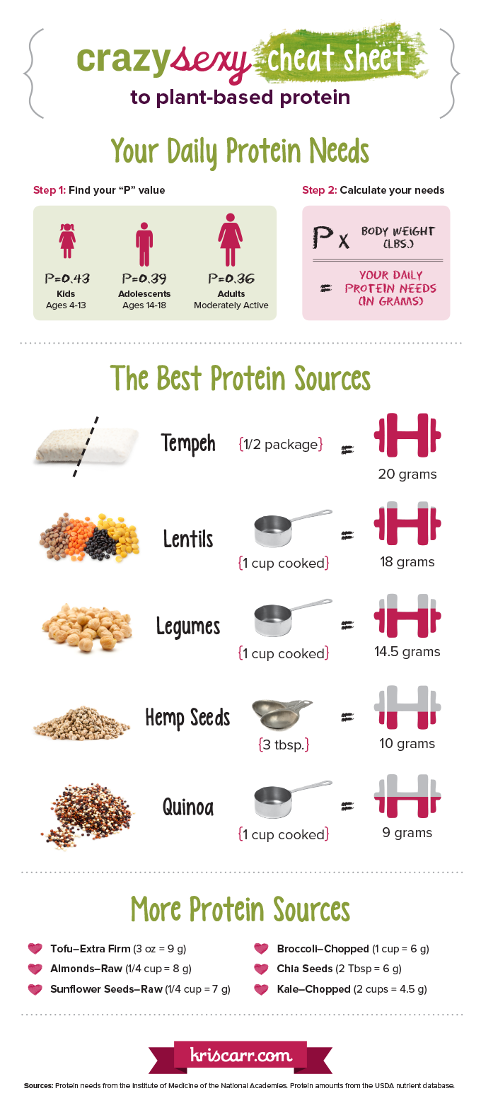 High Protein Plant Foods Vs Animal Protein